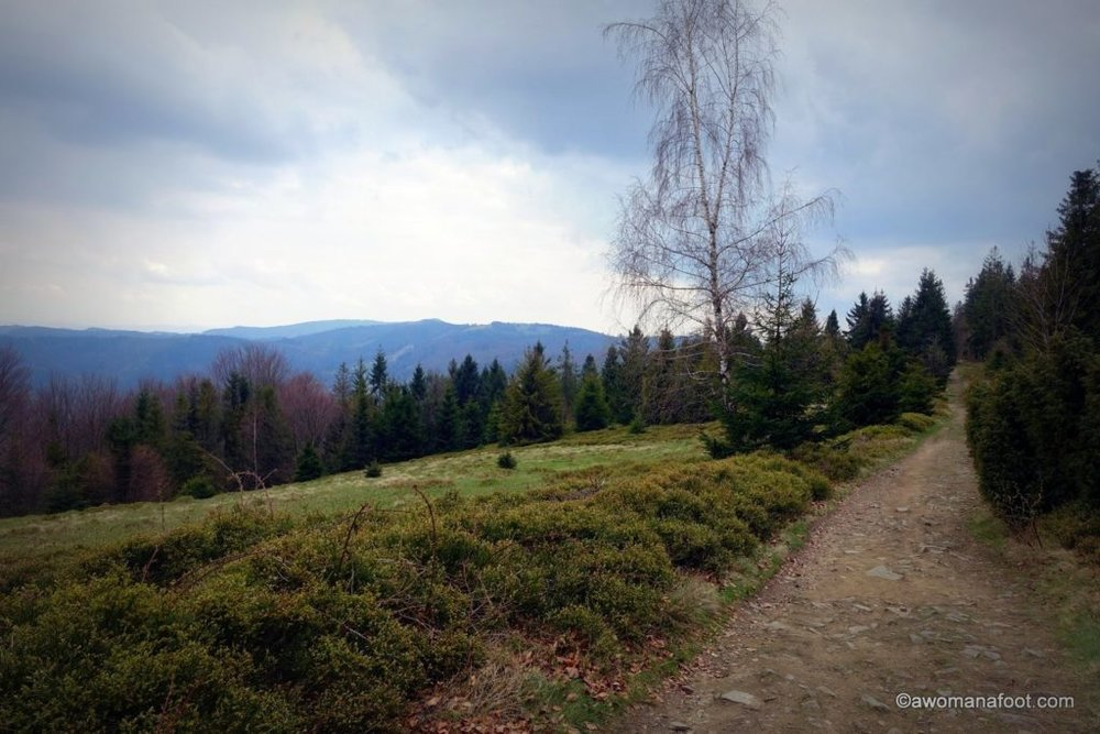 Check out one of the best day hikes Silesian Beskids have to offer - great views, challenging trails and cheap accommodation - don't miss it! Day Hike No.2: Ustroń - Czantoria - Soszów - Wisła Dziechcinka. Learn more about hiking in Poland @ Awomanafoot.com | women hikers | Beskid | Poland | hiking #trails | #Wisła | Carpathians | #Hiking in #Poland | #solo | Hiking trails in Europe | Europe off the beaten path | Active vacation destinations|