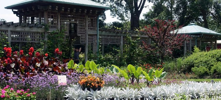 montreals botanical garden is one of the citys main attractions grab comfy shoes snacks - Montreal Botanical Garden