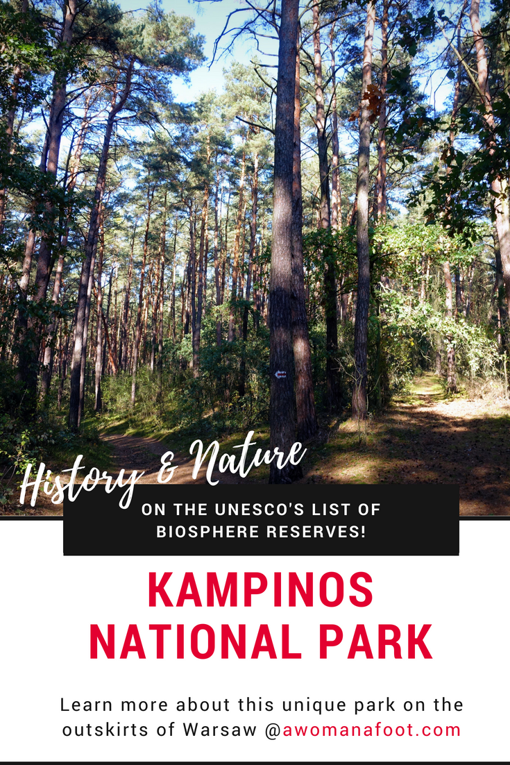 Kampinos National Park - a true natural gem right outside of Warsaw, Poland awomanafoot.com - Just a short ride by bus you will find a unique green oasis filled with natural beauty and rich history. Click to learn more! | What to do in Warsaw | Polish History | Hiking near Warsaw | Urban Hiking Warsaw | Nature Parks in Europe | UNESCO | #Warsaw #Poland #Kampinos #NationalPark #Hiking #PolishHistory #EasternEurope #UrbanHiking