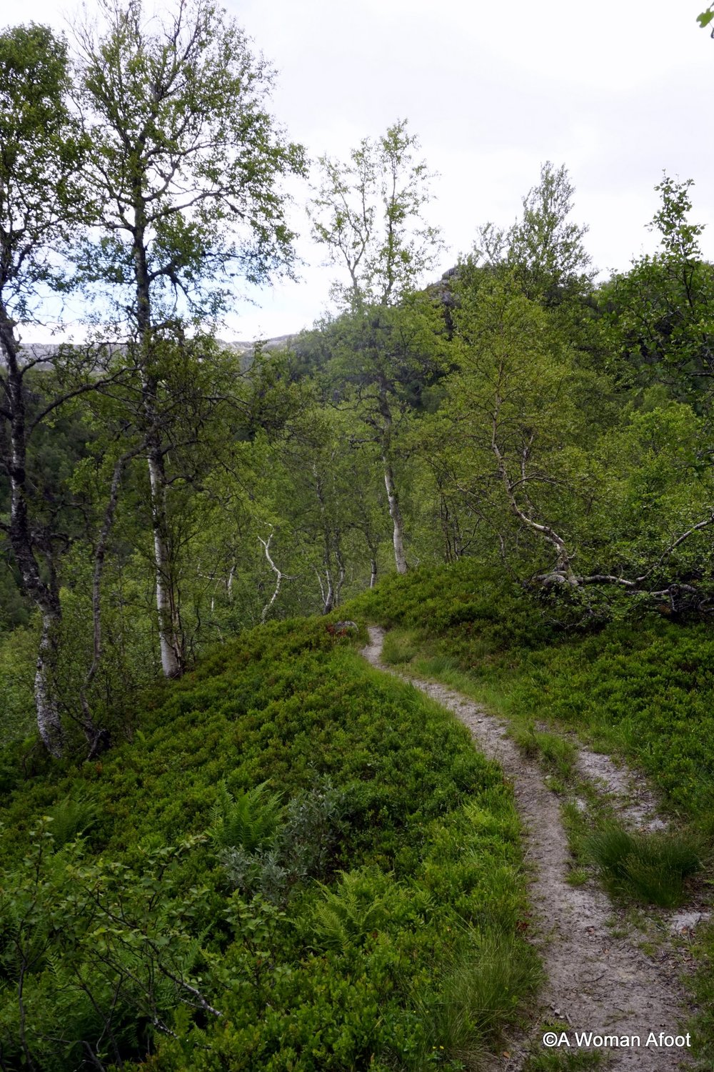 Take a virtual hike through the magnificent mountains of southern Norway. Female solo hiking and camping from Vending to Voss @ AWOMANAFOOT.COM | Hiking destinations in Europe | Trails in Norway | What to do in Bergen | Hiking destinations for women | Wild camping | #hiking #camping #solo #trekking #backpacking #Bergen #Norway #Voss