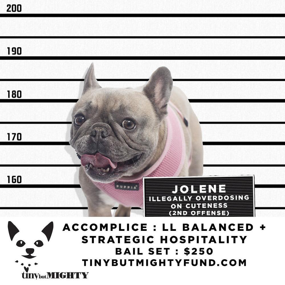 JOLENE (1).jpg