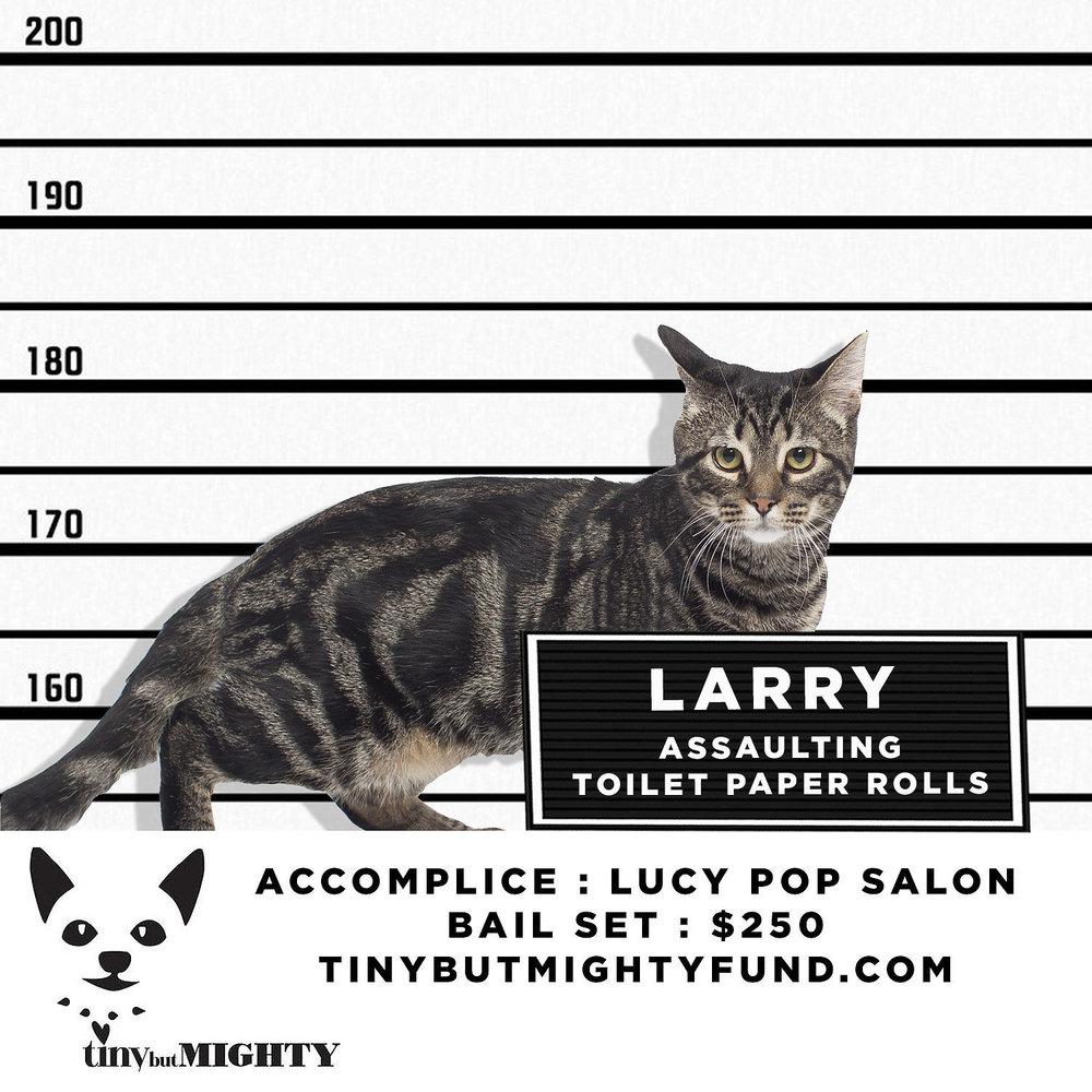 LARRY (1).jpg