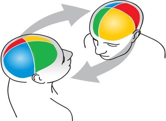 PRISM brains.jpg