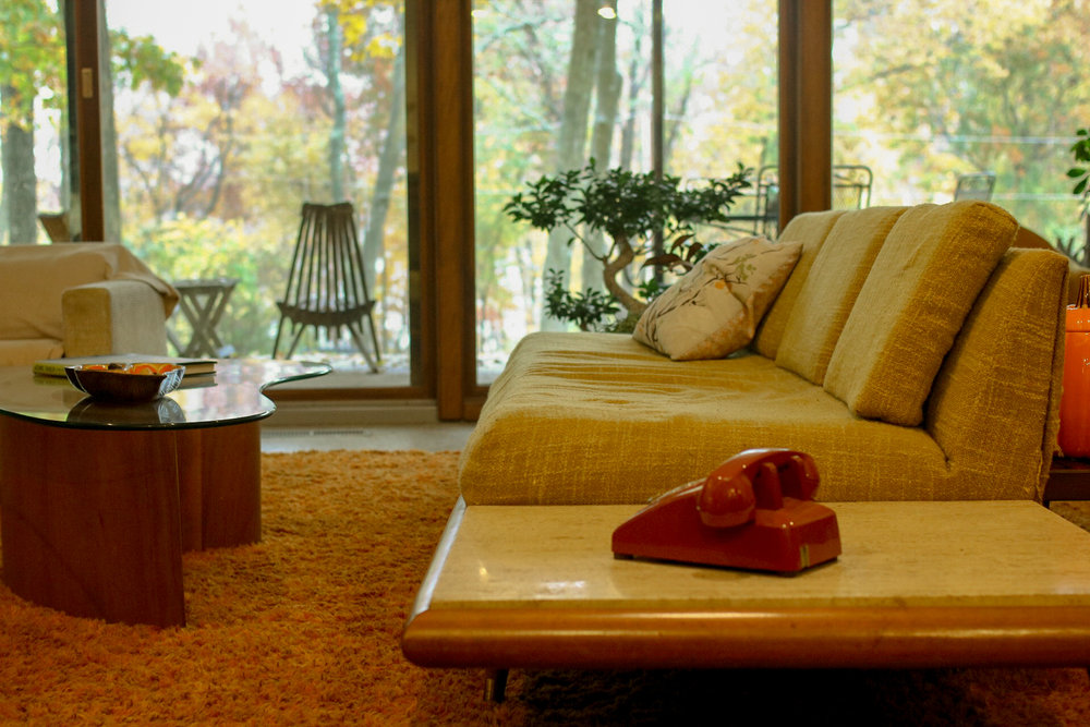Mid-Century Modern Chic - Written By: Morgan CarletonPhotography: Sav Snow