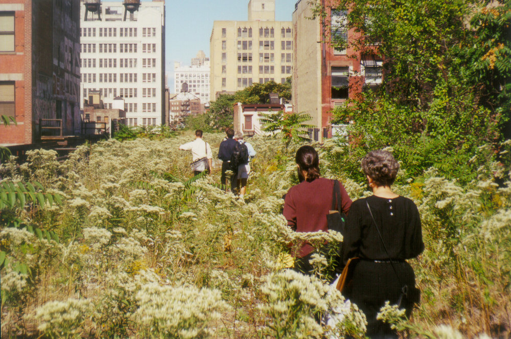 DECONSTRUCTING THE HIGH LINE - Writing