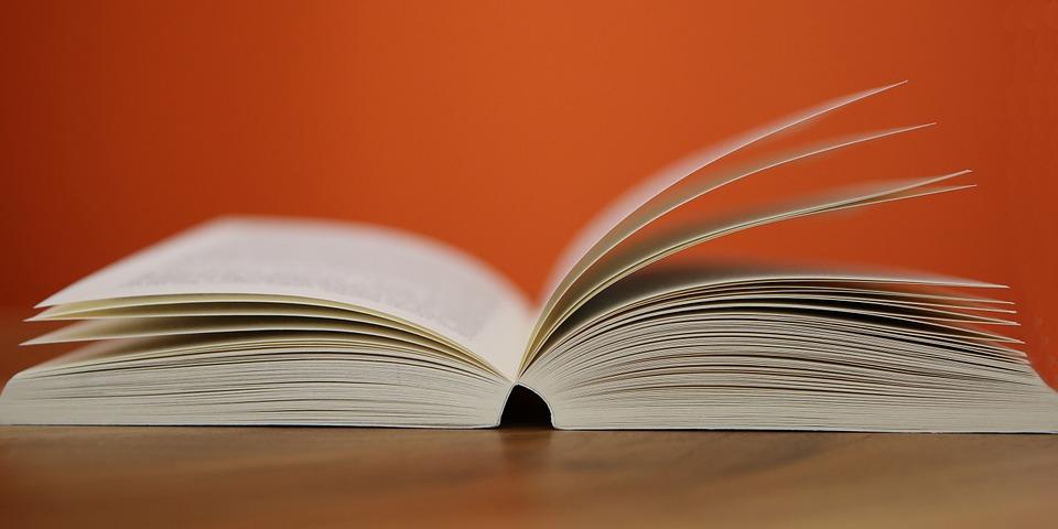 book-408302_960_720.jpg