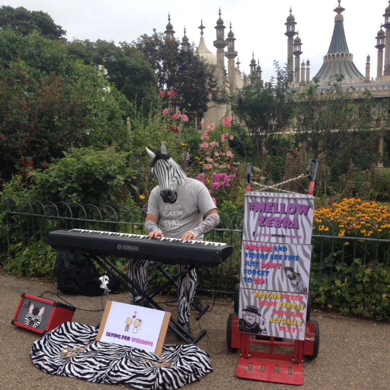 Piano teacher - Vadim - lives by the clocktower and has been with us a while. He is a superb performer and a wonderful piano teacher. He's quite a celebrity around Brighton & Hove and is also know as the Mellow Zebra.