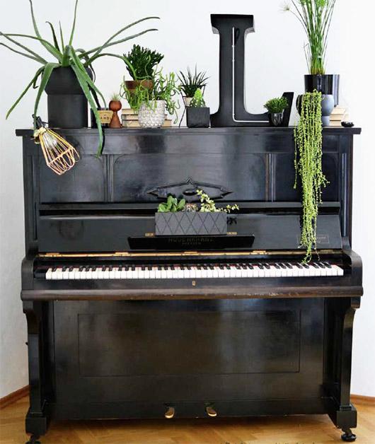 brighton piano lessons