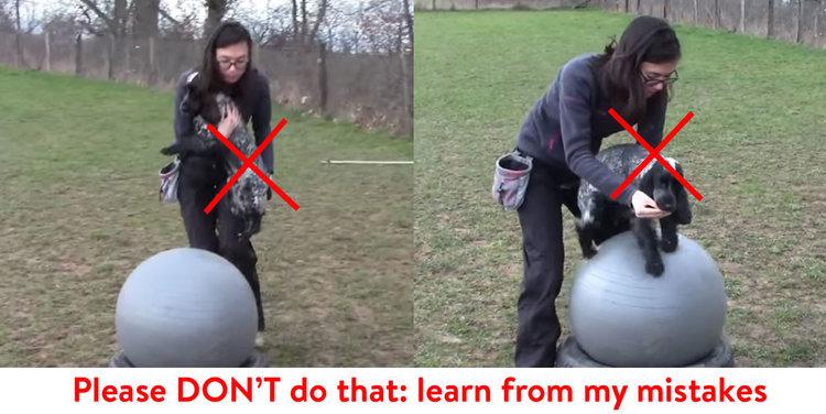 S'il vous plait, ne faites pas ça : apprenez de mes erreurs !  Notez que cette photo représente ce qu'il ne faut PAS faire – Tout est mauvais ici, du fait de la porter à celui de vouloir la faire tenir sur un ballon comme premier exercice (son dos est vouté, c'est quelque chose que l'on cherche à éviter dans la pratique du fitness).