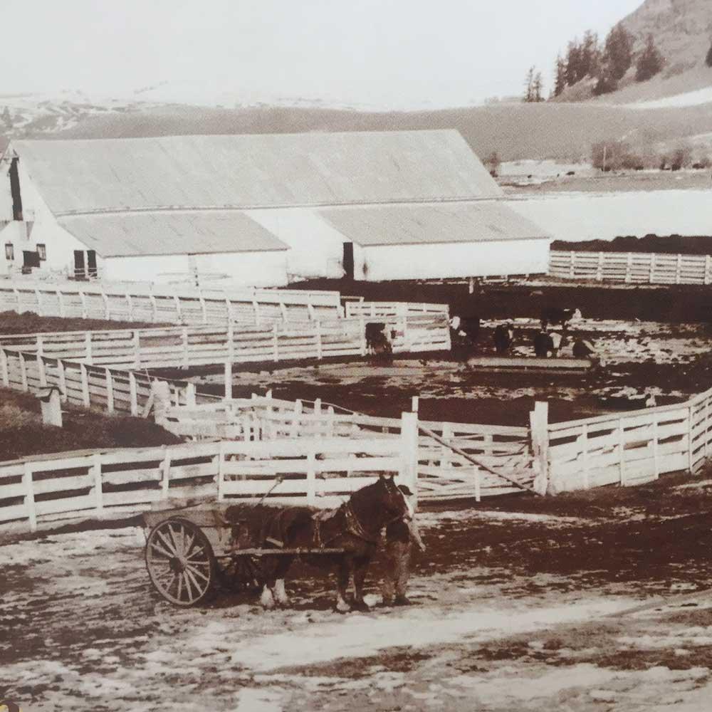 dlr-img-ranch-history-x-10.jpg