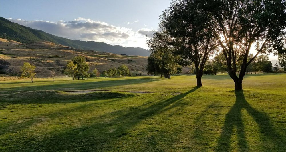 dlr-img-q-golf-1500x800-1.jpg