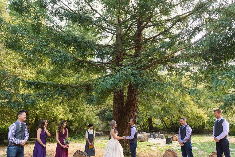 Gabby&Wayne-114_ceremony in front of tree.jpg