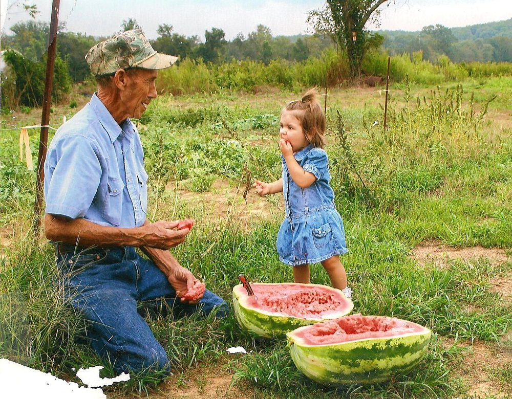 GRANDPA CARL STRENFEL WITH LIBBY SAMPLING A WATERMELON