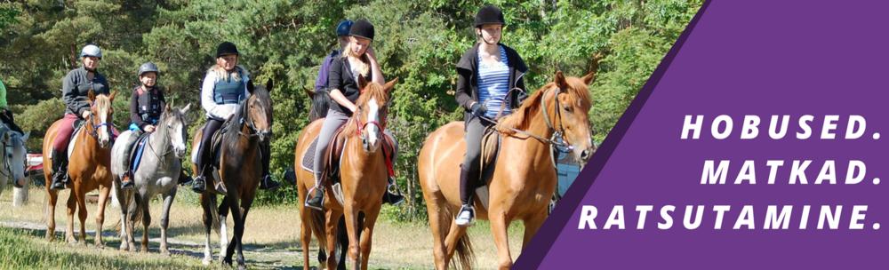 Hobused-ratsamatkad-ratsutamine-Hiiumaa.png