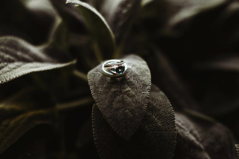 Quarter-Moon-Wedding-Photography-Engagement-Bucks-County49.jpg