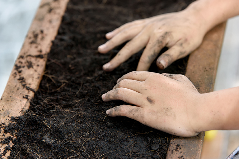 bigstock-Hand-Planting-174389923.jpg