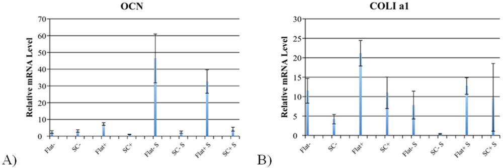 Figure 12. OCN and COL1 a1 RT-PCR graph on relative mRNA levels. This figure shows the late markers for osteogenic differentiation, osteocalcin (OCN) and collagen type 1 alpha 1 (COL1 a1). Flat signifies the 3-D printed scaffold whereas SC signifies the spuncast scaffold. A) It was shown that across the board mRNA levels for OCN are low. All 3-D printed scaffolds show significant increases over their spuncast scaffold counterparts with the one exception of the no treatment scaffolds. B) It was shown that for COL1 a1 the mRNA levels show significant increases for all 3-D printed scaffolds as compared to their spuncast counterparts with the exception of the scaffolds treated with both dexamethasone and shake incubation.