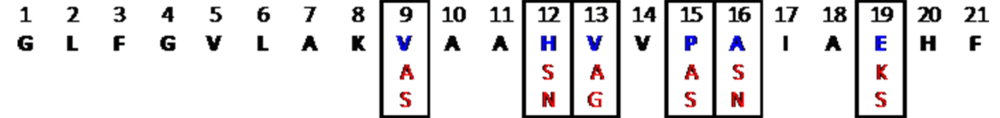 Figure 6. Final peptide library used for synthesis based on the results of the AMP prediction algorithm. The random forest algorithm was used since it had the highest accuracy, precision and AUROC, as well as the lowest false positive rate.