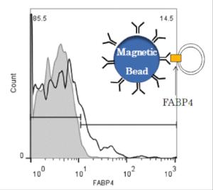 Figure 2 . Exosome Quantification through Flow Cytometry
