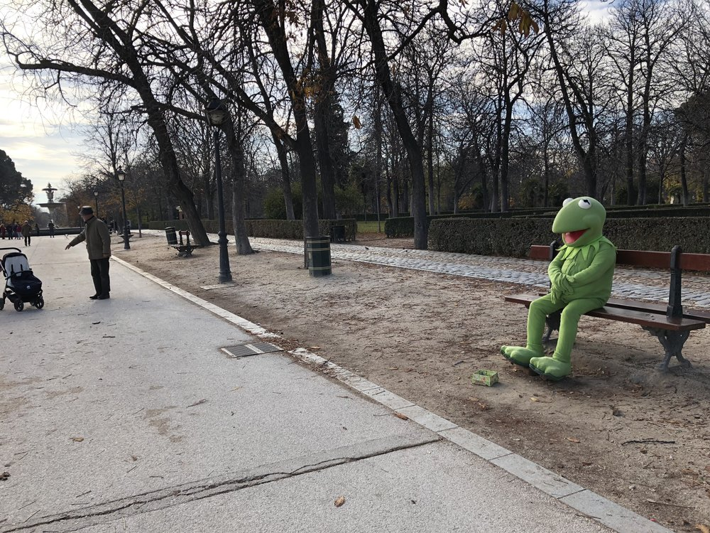 I don't think this Kermmie could look anymore sad sitting all alone in Retiro Park in the cold Madrid winter.