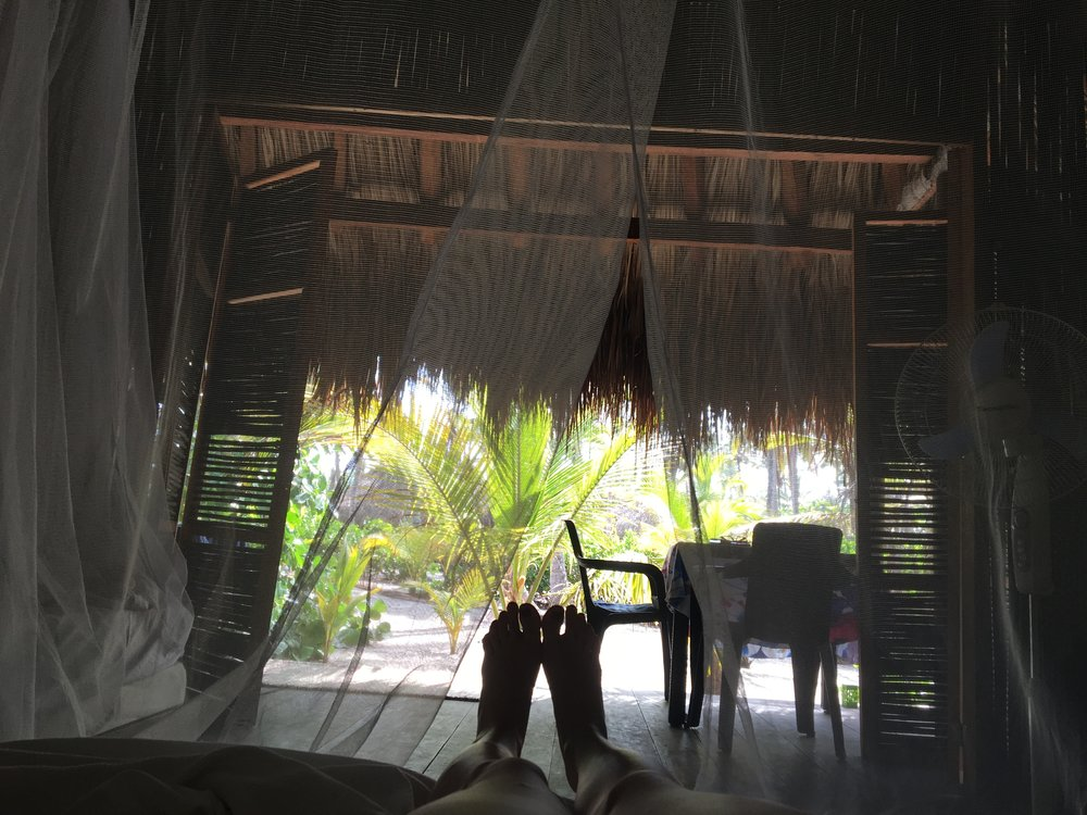 The view from inside our ecohab at Playa Pikua, looking out from under the mosquito net on the bed.