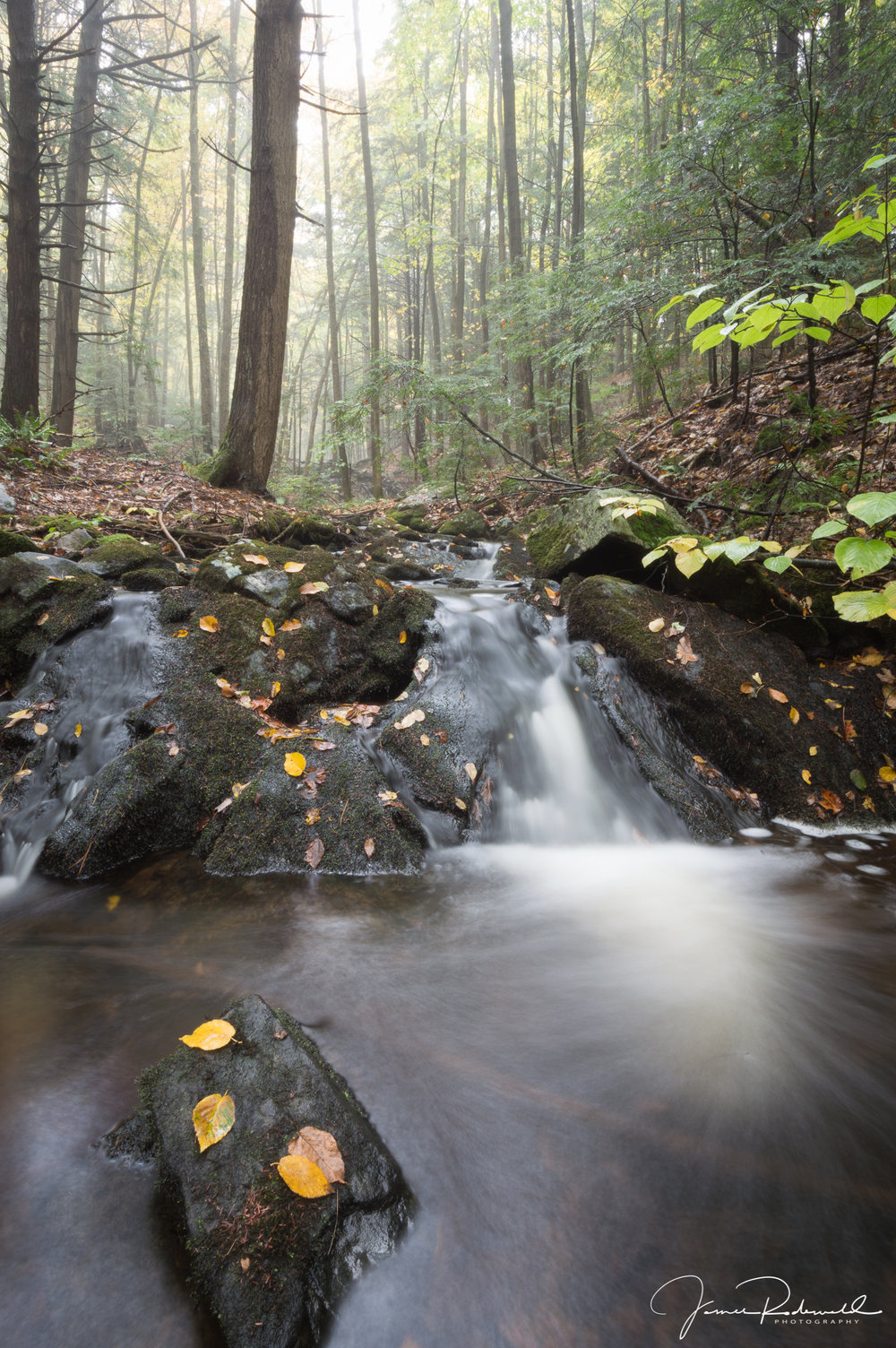 """ Flowing through Fall."", Southeast Adirondacks."