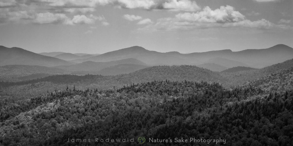 """Adirondack Skies B&W"" to benefit Adirondack Council"