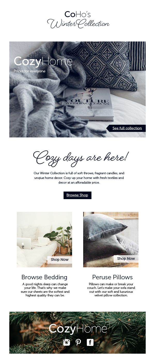 CozyHome_Email_Blast.png