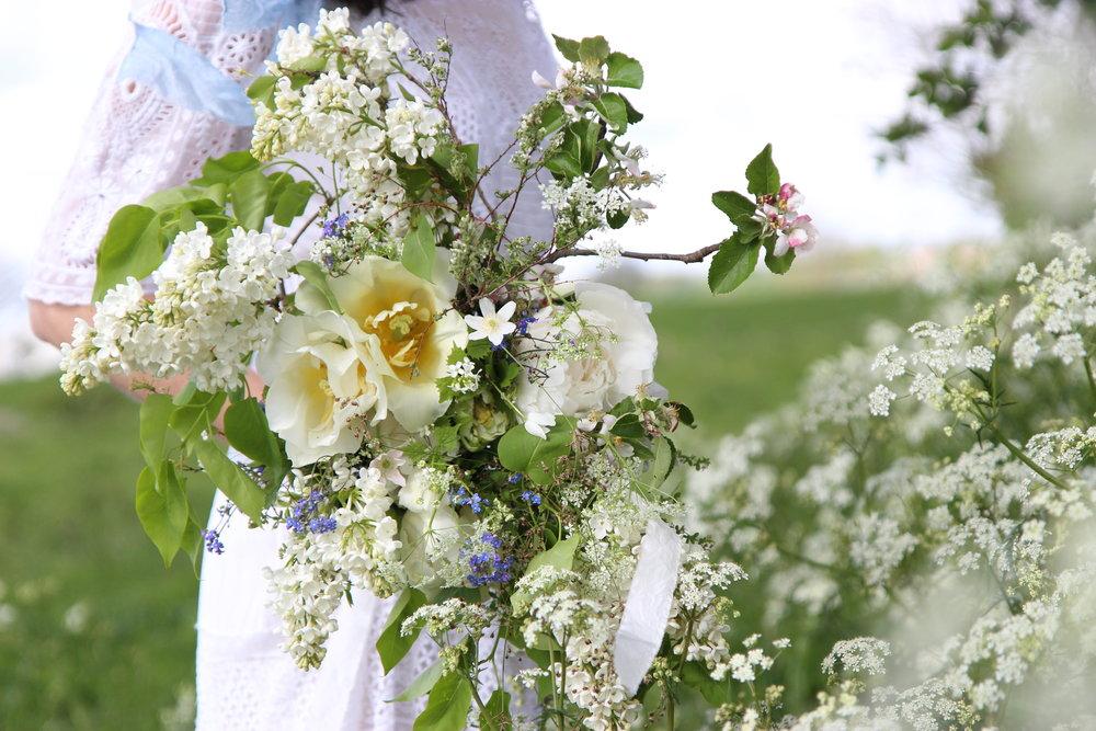Chloris_Floral_7.JPG