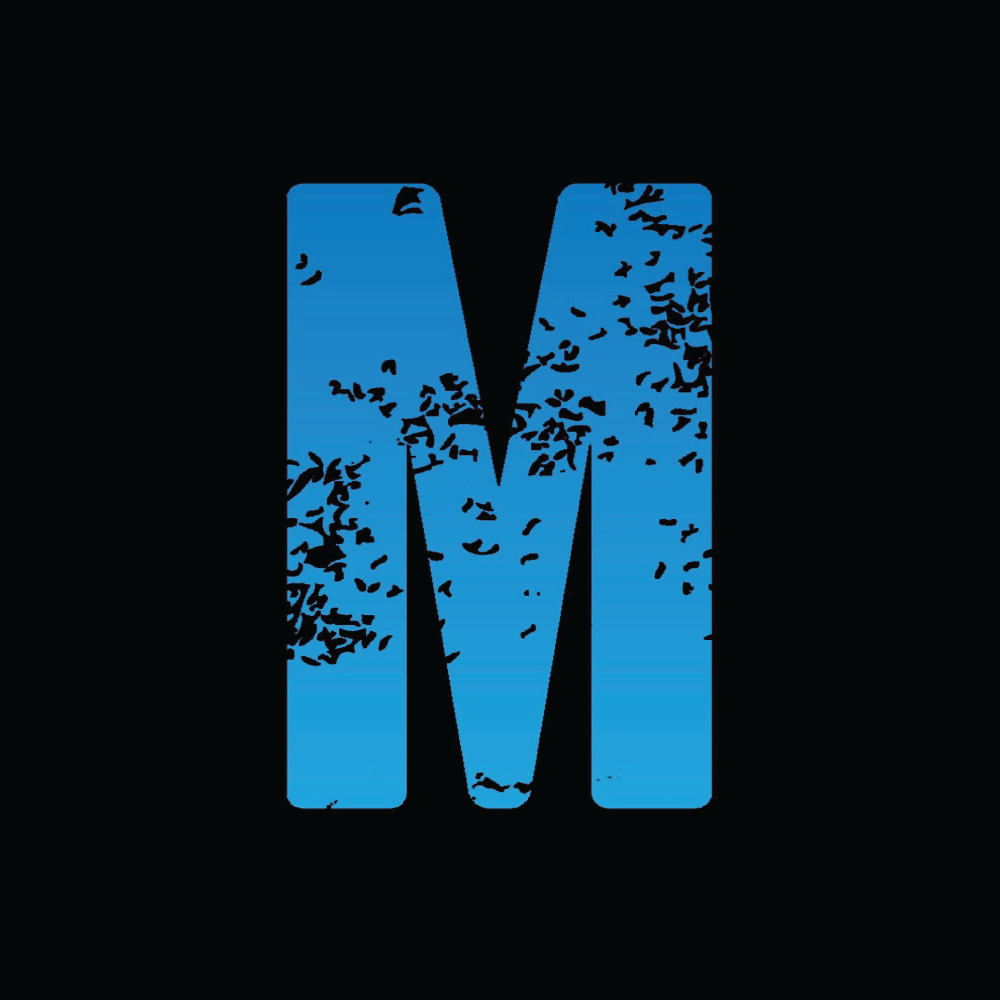 MOMENTUM - OFFICIAL FACEBOOK PAGE FOR MOMENTUM