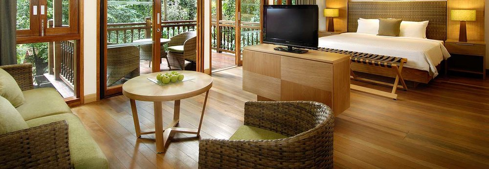 rainforest-studio-room-interior.jpg