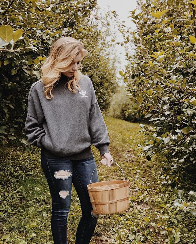 Reminiscing on last year's fall festivities as I plan the season to come 🍏🍁 . . . #fallfavorites #fallfestivities #fallblogger #fallfashion #sweaterweather #adidas #greenvilleblogger #greenvilleblog #gvlifestyles #dioranddoughnuts #applepicking #skytop