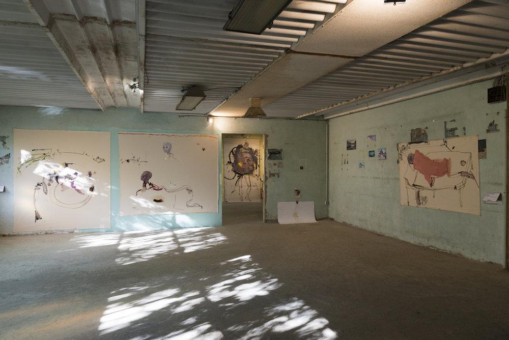 Galleria Continua, Les Moulins, 2017