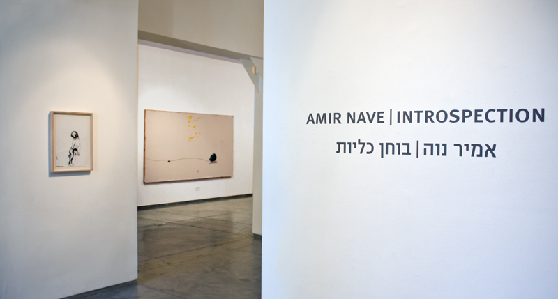 Introspection, Sommer Contemporary, 2016, Tel Aviv