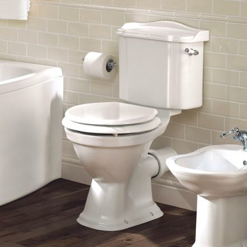 Outstanding Toilets Bidets Products Waterloo Bathrooms Squirreltailoven Fun Painted Chair Ideas Images Squirreltailovenorg