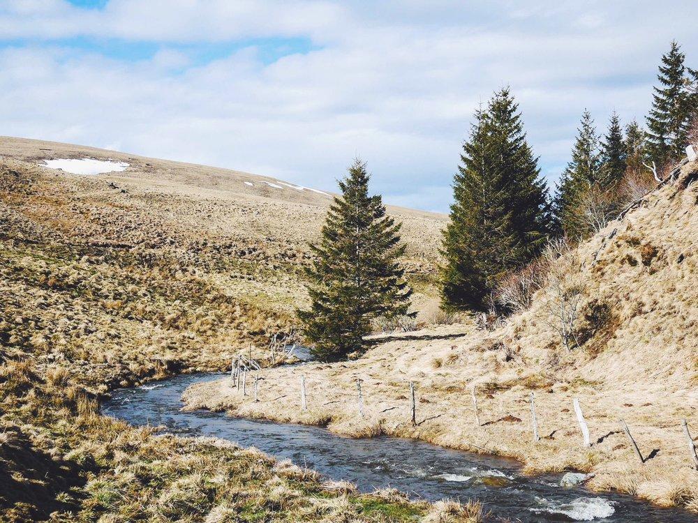 Rando sur le pleateau du Cezallier en Auvergne