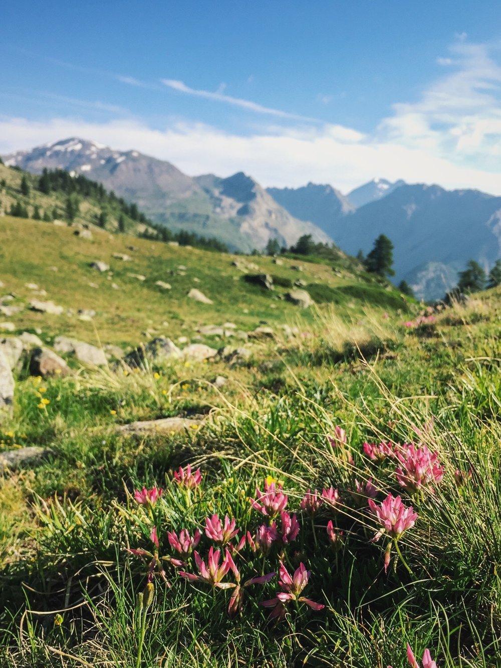 Rando vallée de la Clarée près de Briançon