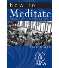 How To Meditate: Tara Brach (PDF) - https://www.tarabrach.com/howtomeditate/  Part 1: How to Establish a Daily Sitting PracticePart 2: Common Issues for MeditatorsPart 3: Sustaining a Practice & Resources