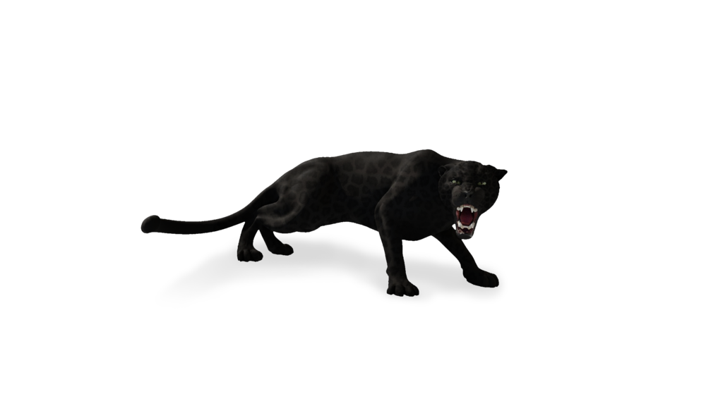 jaguar_render_001TRANSPARENT.png