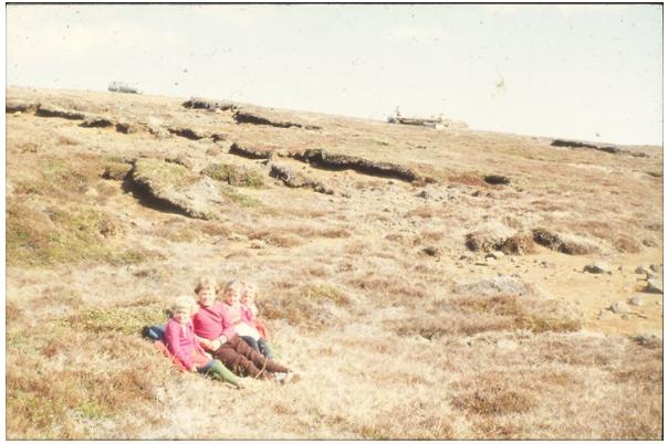 Guðmundar lundur fyrir  60 árum..png