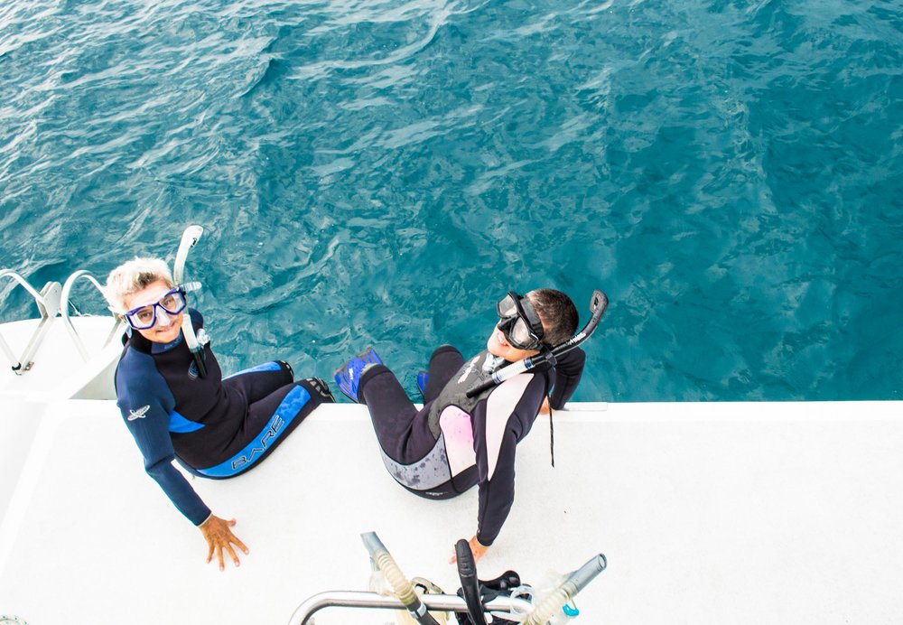 SNORKEL-SIP-EAT-REPEAT - 11am - Discover colorful reefs under the watchful eye of our expert snorkel guide while our Captain & Galley Hostess fire up the grill to whip up a gourmet BBQ spread!12pm - Indulge in a delicious lunch of BBQ chicken, grilled fish, pineapple salsa and an array of mouth watering sides.1-3pm - Have it your way: lounge on the boat, enjoy a cool swim, a relaxing float, or continue to explore the reefs at your second snorkel destination.