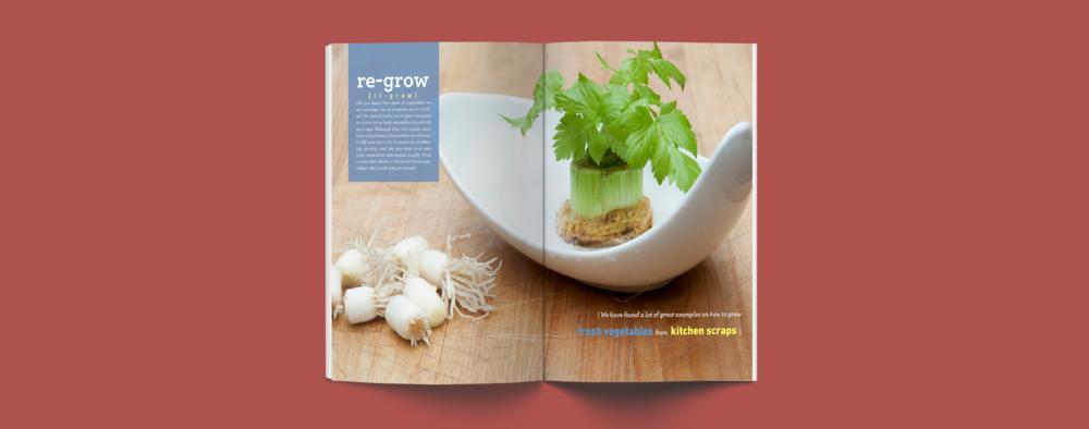 regrow-08.png
