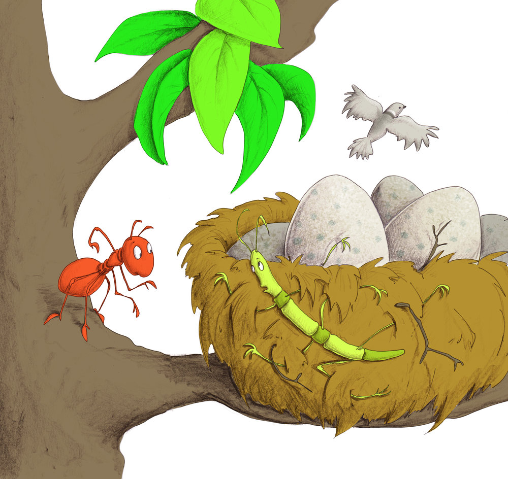 Download image from Little Ant and the Dove.
