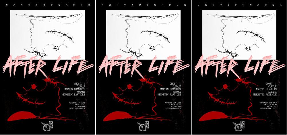 No Start No End- After Life - Google Docs-1 copy.jpg