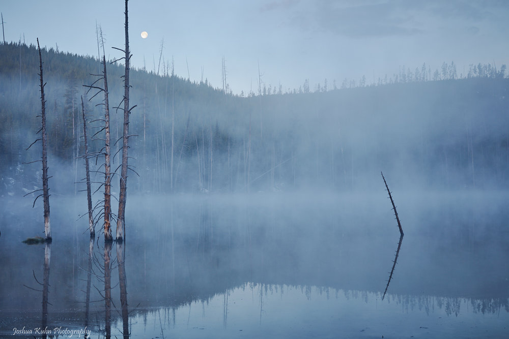 Moon Blue Mist      Purchase