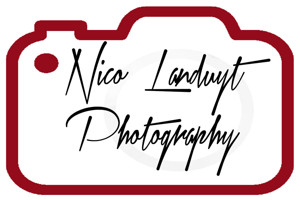Logo-NL-zwartrood copy.jpg