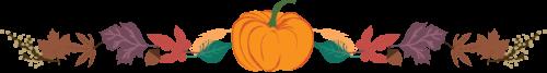 pumpkin-clipart-divider-6.png