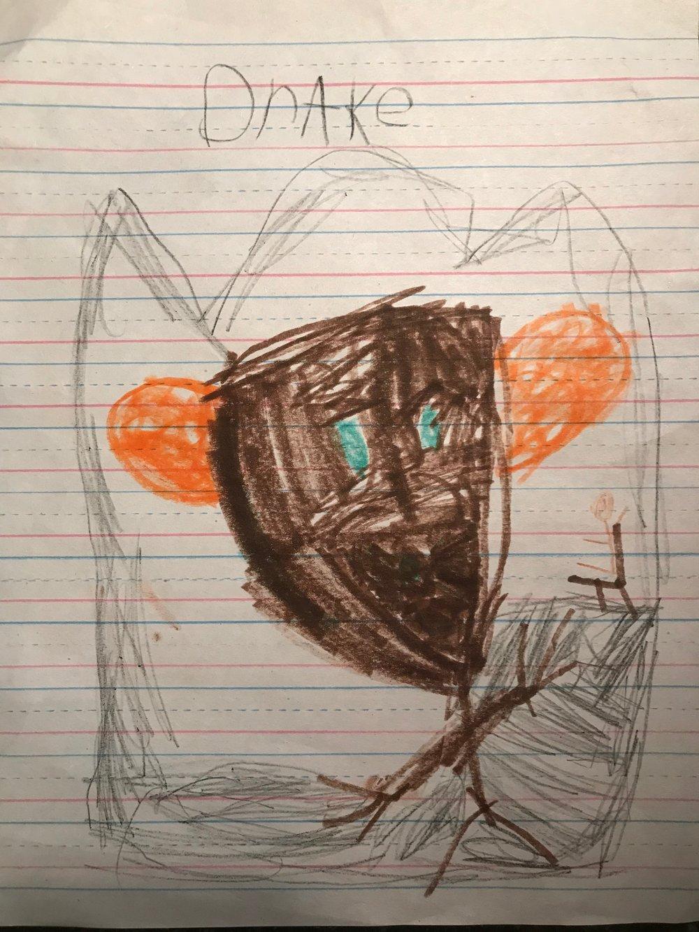 Drake, Grade 1