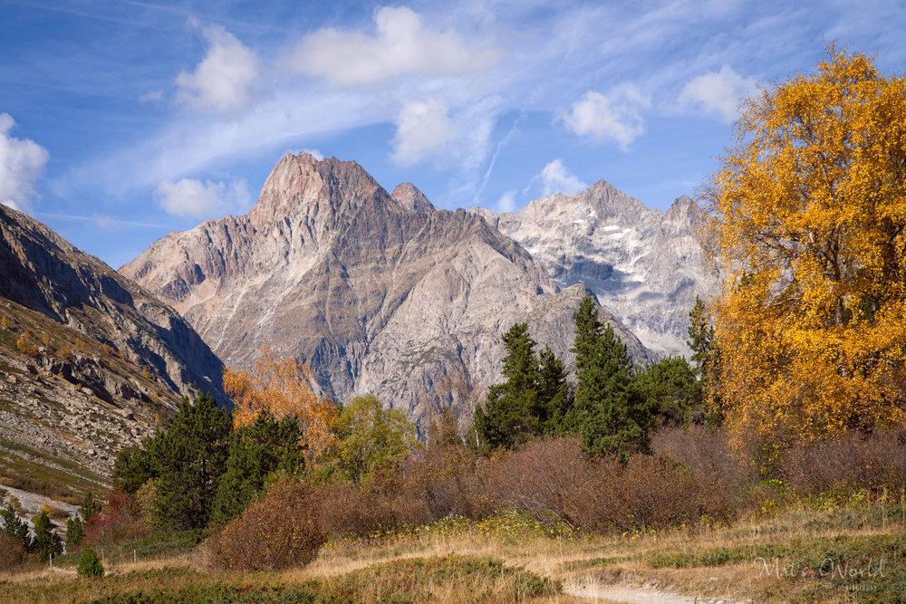 YosemiteLike2 (1 of 1).jpg