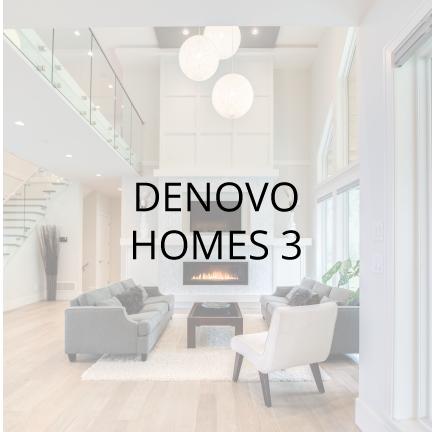 Denovo-Project-Image.png